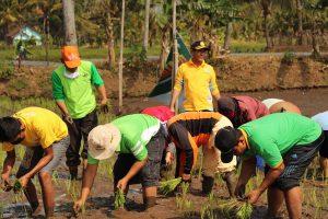 KP3 Ancam Distributor Pupuk Nakal Bila Rugikan Petani