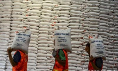 Jumlah serapan beras Bulog hingga akhir Februari 2021
