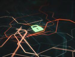 Tips Mencegah Penyebaran Bencana Saat Terserang Ransomware