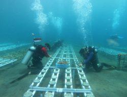 Mendukung Pemulihan Laut, CSC di Manado Sulut Diperluas